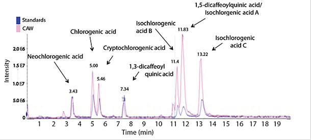 This figure shows mass spectra that were acquired utilizing enhanced product ion (EPI) mode in which two experiments were used, the first selecting ions with m/z 515 and the other 353, and collisionally induced dissociation was performed using a collision
