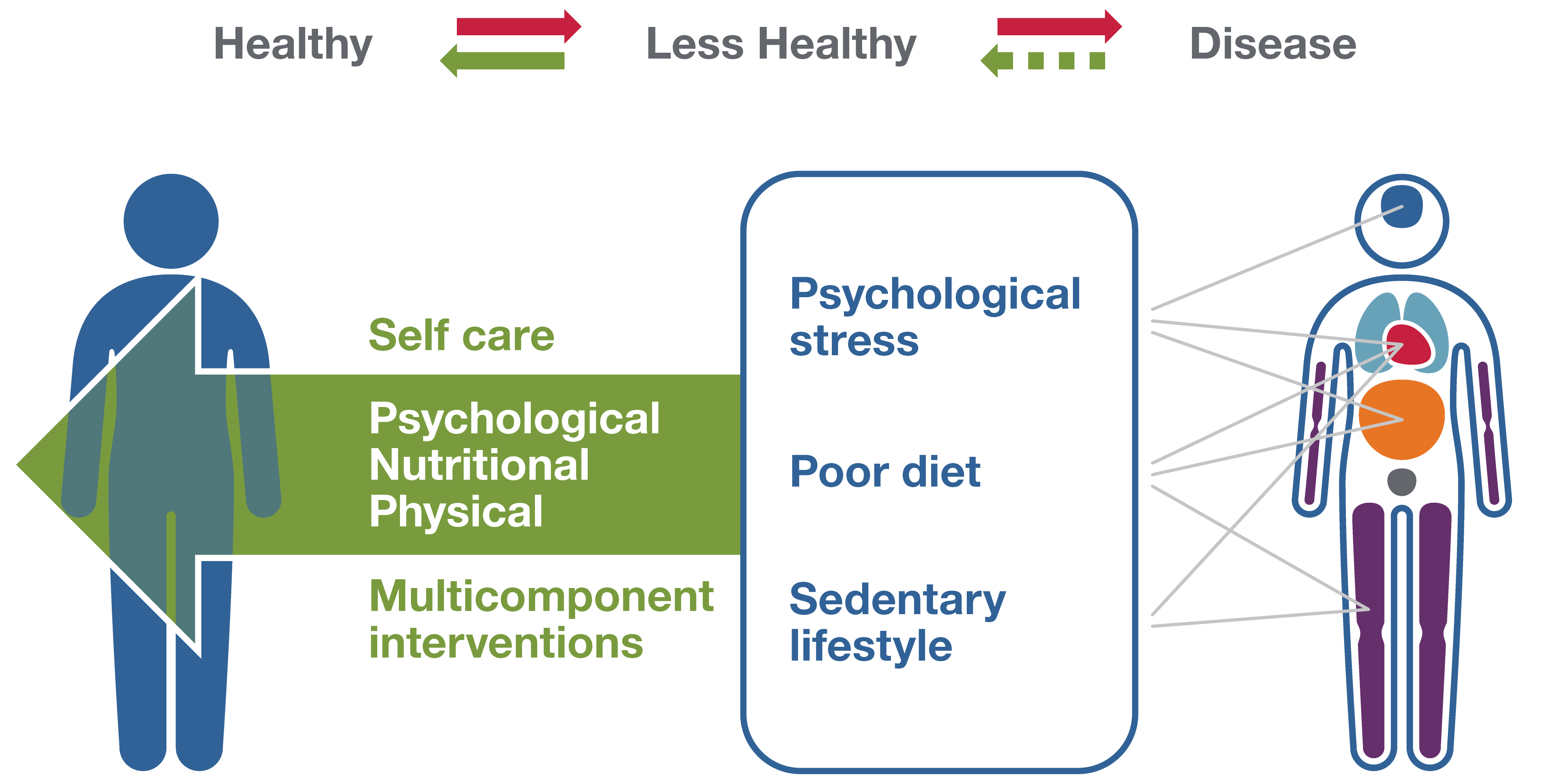 Integrated Approach to Multisystem Health Restoration