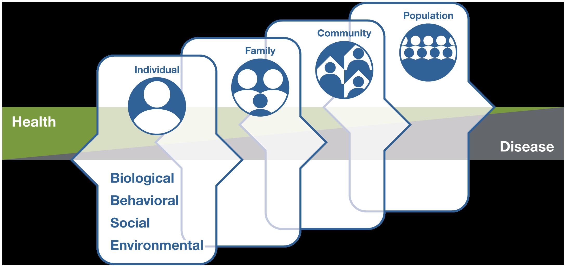 Multilevel Whole Person Health Framework