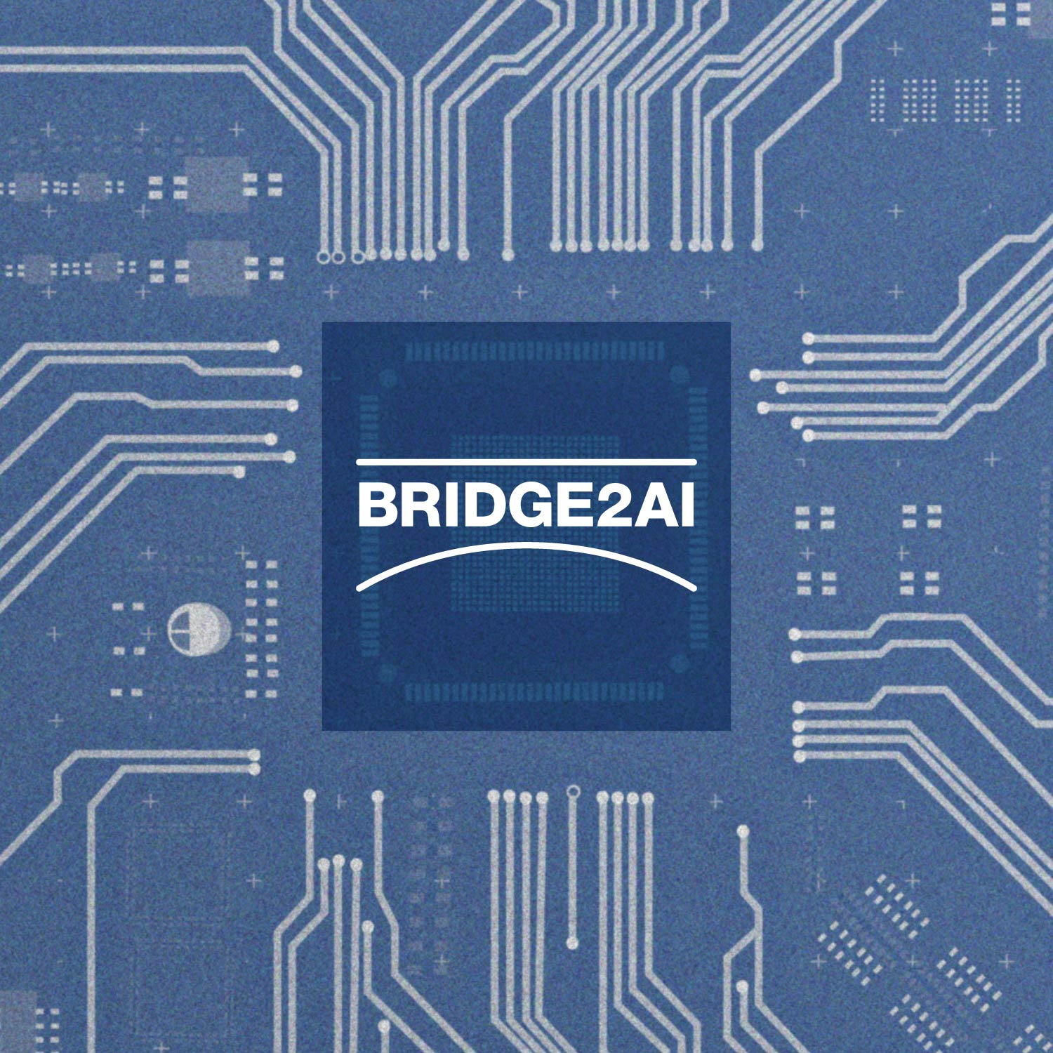 Bridge2AI graphic