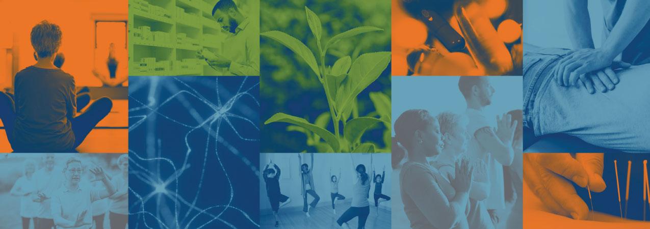 NCCIH Strategic Plan FY 2021–2025