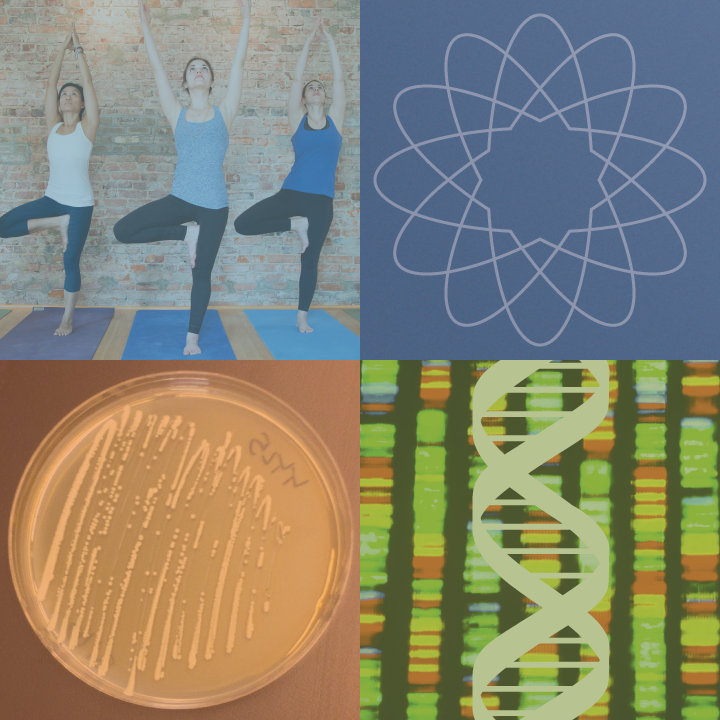 Collage with images of a yoga class, yeast culture plate, and DNA.