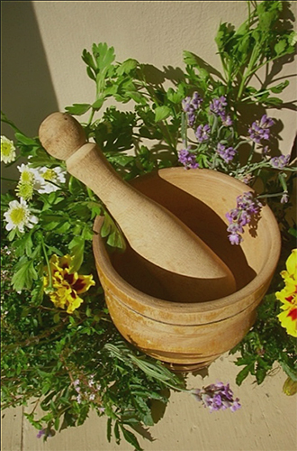 A wooden mortar and pestle with an array of green herbs around them.