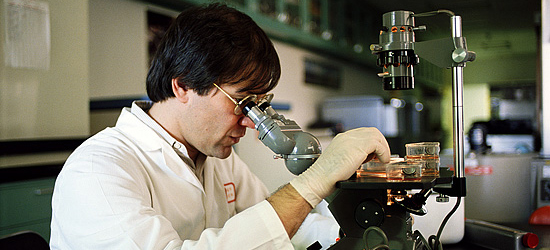 A scientist examines a specimen under a microscope