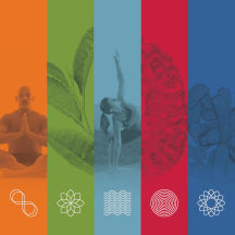 NCCIH Exhibits Program icon