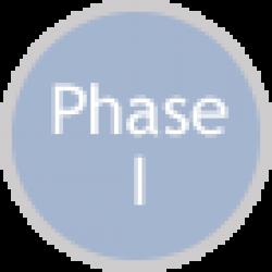SBIR Phase I Icon