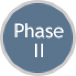 SBIR Phase II Icon