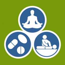 Icons of wellness: meditation, pills, spinal manipulation