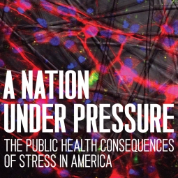 A Nation Under Pressure: The Public Health Consequences of Stress in America