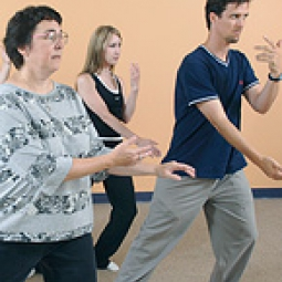 People in a tai Chi class.