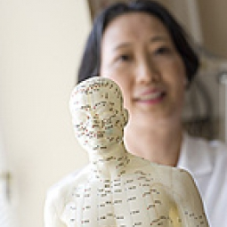A close up of an acupuncture model with a docotor in the background.