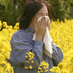 Woman sneezing in a field of flowers.
