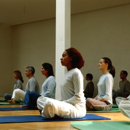 People participating in a yoga class.