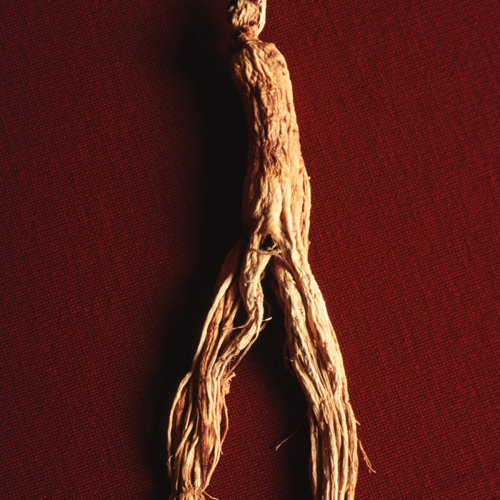 ginseng essay Ginseng basis of the asian science of consumption the asian tradition of categorizing food is based on the observation of one's reaction after consumption.