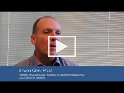 What is social genomics? Q and A with Dr. Cole