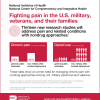 Infographic on fighting pain in the U.S. military. Follow link below for full text description.