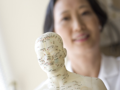 Doctor displays a model of acupuncture points on the body.