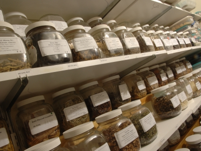 Rows of dried herbs line the shelves.