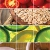 A collage of Carrots, Tomatos, Grains, Citrus Slices, Tea, and
