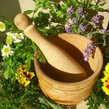 A wooden mortar and pestle with an array of green herbs around them. © Sharambrosia