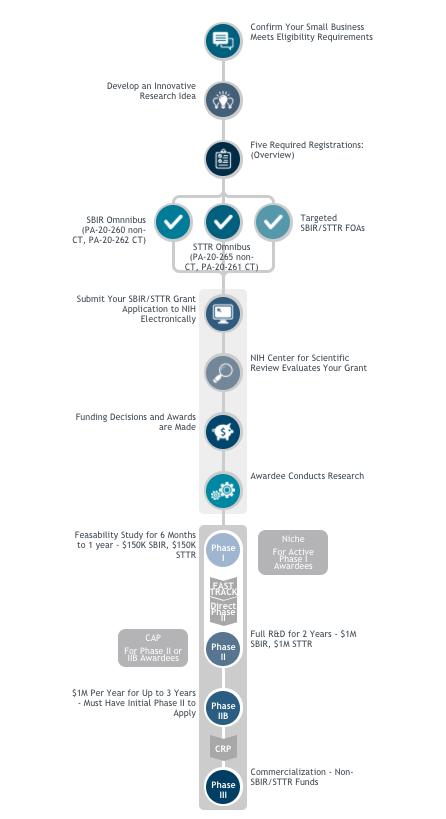 SBIR infographic